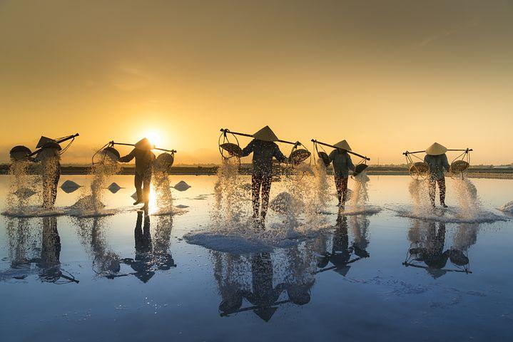 Quel est le meilleur moment pour voyager au Vietnam ?