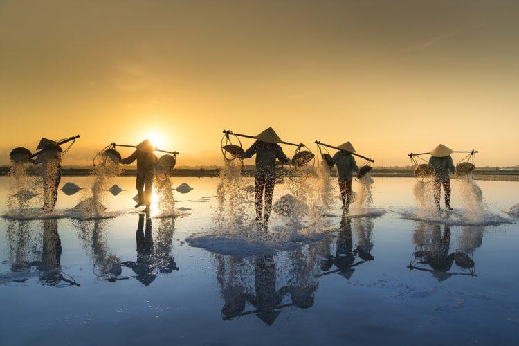 Les raisons pour voyager au Vietnam