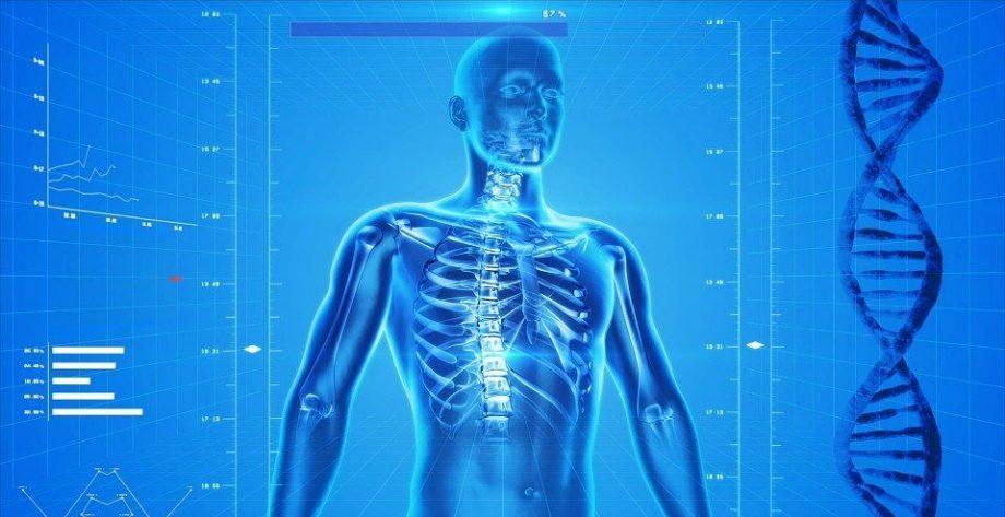 Comprendre le fonctionnement de notre corps grâce à 3 livres !